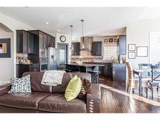 Photo 10: 12 ROCKFORD Terrace NW in Calgary: Rocky Ridge House for sale : MLS®# C4050751