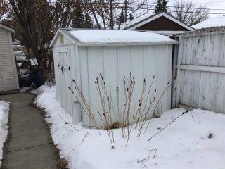 Photo 16: 11543 101 Street in Edmonton: Zone 08 House for sale : MLS®# E4229526