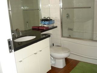 """Photo 11: 302 310 WATER Street in Vancouver: Downtown VW Condo for sale in """"down town"""" (Vancouver West)  : MLS®# R2104779"""