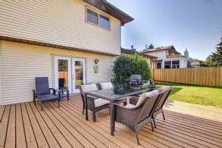 Photo 4: 9832 187 Street in Edmonton: Zone 20 House for sale : MLS®# E4253744