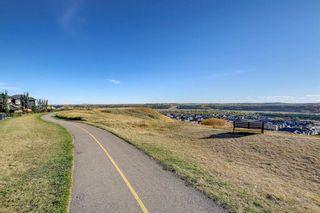 Photo 45: 67 CRANARCH Terrace SE in Calgary: Cranston Detached for sale : MLS®# A1149171