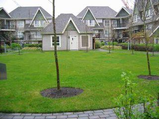 """Photo 17: 14 9339 ALBERTA Road in Richmond: McLennan North Condo for sale in """"Trellaine"""" : MLS®# R2326104"""