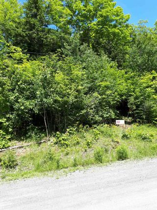 Photo 6: Meiklefield Road in Meiklefield: 108-Rural Pictou County Vacant Land for sale (Northern Region)  : MLS®# 202117504
