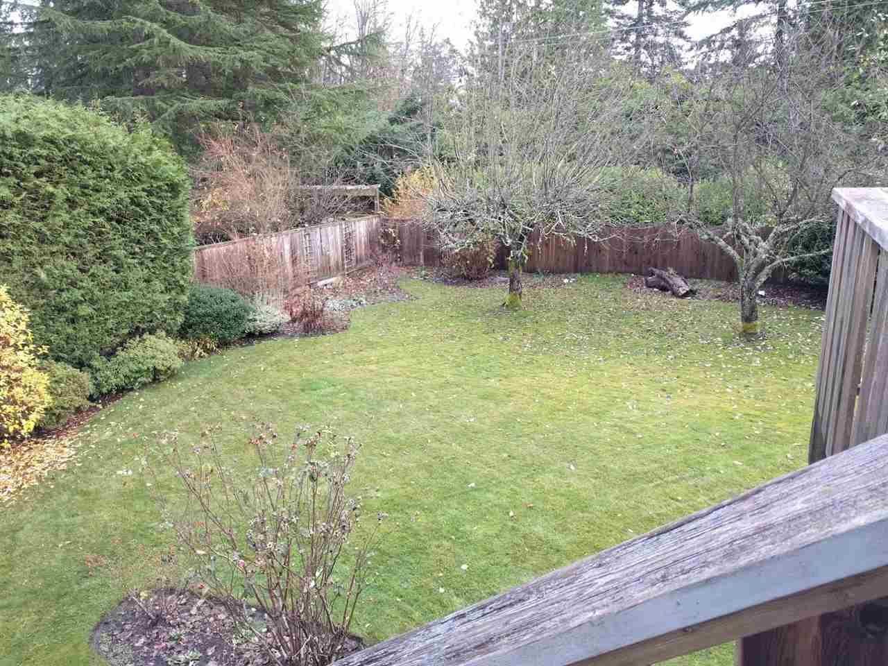 Large south-facing backyard