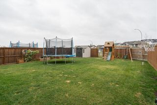 Photo 40: 170 Murray Rougeau Crescent in Winnipeg: Canterbury Park Residential for sale (3M)  : MLS®# 202125020
