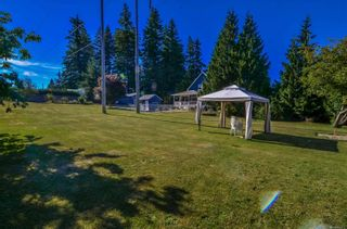 Photo 15: 770 Petersen Rd in : CR Campbell River South House for sale (Campbell River)  : MLS®# 864215