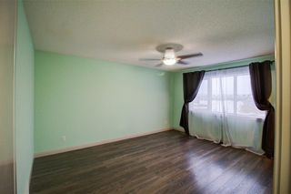 Photo 17: 6 COPPERPOND Court SE in Calgary: Copperfield Detached for sale : MLS®# C4292928