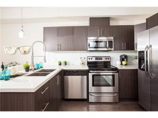 """Photo 4: 403 12070 227TH Street in Maple Ridge: East Central Condo for sale in """"STATION ONE"""" : MLS®# V1094408"""