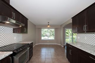 Photo 14: 12062 201B Street in Maple Ridge: Northwest Maple Ridge House for sale : MLS®# V1074754