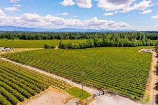 Photo 7: 21.44AC 240 STREET in Langley: Langley City Agri-Business for sale : MLS®# C8038637
