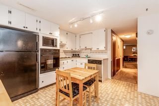 Photo 21: 144 Franklin Drive SE in Calgary: Fairview Detached for sale : MLS®# A1150198