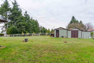 Photo 16: 19925 12 Avenue in Langley: Campbell Valley House for sale : MLS®# R2423986