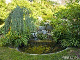 Photo 12: 466 Constance Ave in VICTORIA: Es Esquimalt House for sale (Esquimalt)  : MLS®# 510462