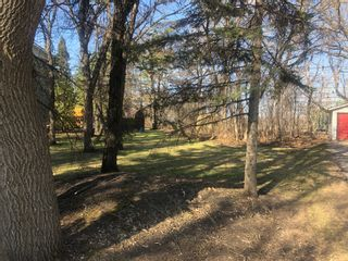 Photo 4: 0 14th Street NW in Portage la Prairie: Vacant Land for sale : MLS®# 202025147
