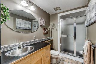 Photo 41: 928 LAKE ARROW Way SE in Calgary: Lake Bonavista Detached for sale : MLS®# A1037803