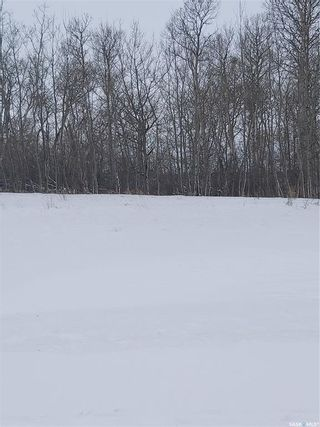 Photo 7: R.M. Of Dundurn #314 lot #2 in Dundurn: Lot/Land for sale (Dundurn Rm No. 314)  : MLS®# SK839263