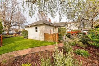 Photo 20: 1559 Bay St in VICTORIA: Vi Fernwood House for sale (Victoria)  : MLS®# 784514