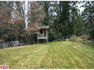 Photo 33: 32437 EGGLESTONE Avenue in Mission: Mission BC House for sale : MLS®# F1028384