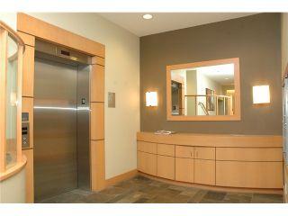 Photo 4: # 313 2263 REDBUD LN in Vancouver: Kitsilano Condo for sale (Vancouver West)  : MLS®# V1026120
