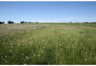Photo 14: 3 4141 Twp Rd 340: Rural Mountain View County Land for sale : MLS®# C4123342