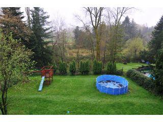 "Photo 10: 23425 TAMARACK Lane in Maple Ridge: Albion House for sale in ""TAMARACK-KANAKA"" : MLS®# V1002857"