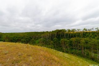 Photo 18: Rm Indian Head 160.39 acres in Indian Head: Farm for sale (Indian Head Rm No. 156)  : MLS®# SK867616