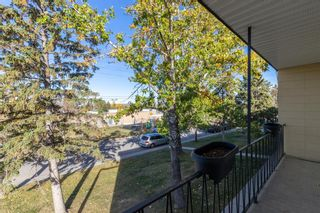 Photo 21: 386 2211 19 Street NE in Calgary: Vista Heights Row/Townhouse for sale : MLS®# A1149478