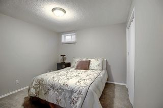 Photo 22: 305 Martinwood Place NE in Calgary: Martindale Detached for sale : MLS®# A1038589