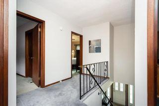 Photo 20: 317 Leila Avenue in Winnipeg: Margaret Park Residential for sale (4D)  : MLS®# 202112459