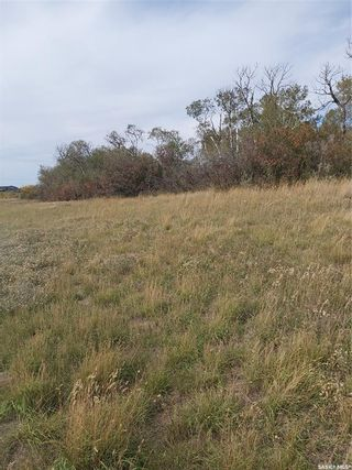 Photo 4: R.M. OF DUNDURN #314 LOT 20 in Dundurn: Lot/Land for sale : MLS®# SK871227