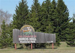 Photo 16: 14 Hornshaw Street in Pine Ridge: Pineridge Trailer Park Residential for sale (R02)  : MLS®# 1807564