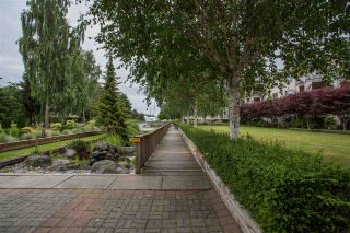 """Photo 14: 426 5500 ANDREWS Road in Richmond: Steveston South Condo for sale in """"SOUTHWATER"""" : MLS®# R2288245"""