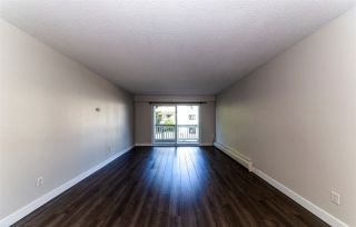 Photo 6: 208 780 PREMIER STREET in North Vancouver: Lynnmour Condo for sale : MLS®# R2295293