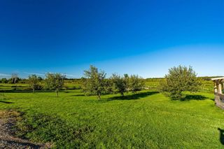 Photo 38: 374448 6th Line in Amaranth: Rural Amaranth House (2-Storey) for sale : MLS®# X4896918