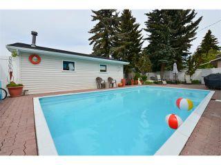 Photo 36: 131 LAKE CRIMSON Close SE in Calgary: Lake Bonavista House for sale : MLS®# C4064324