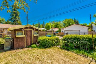 Photo 8: 99 Franklin Drive in Calgary: Fairview Detached for sale : MLS®# A1121296