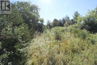 Photo 7: LT 3 SHORE RD in Brock: Vacant Land for sale : MLS®# N5357476