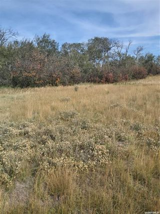 Photo 2: R.M. OF DUNDURN #314 LOT 20 in Dundurn: Lot/Land for sale : MLS®# SK871227