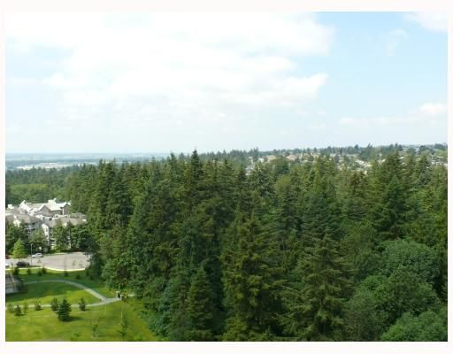 """Photo 19: Photos: 1408 6837 STATION HILL Drive in Burnaby: South Slope Condo for sale in """"THE CLARIDGES - CITY IN THE PARK"""" (Burnaby South)  : MLS®# V770790"""