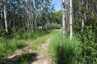 Photo 8: 25255 Bearspaw Place in Rural Rocky View County: Rural Rocky View MD Land for sale : MLS®# A1013795