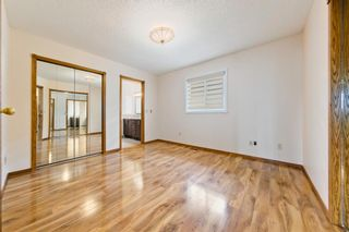 Photo 22: 45 Martinview Crescent NE in Calgary: Martindale Detached for sale : MLS®# A1112618