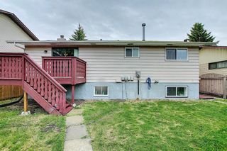 Photo 47: 155 Templevale Road NE in Calgary: Temple Detached for sale : MLS®# A1119165