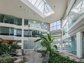 Photo 10: 1550 Enterprise Road in Mississauga: Northeast Property for sale : MLS®# W5161295