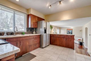 Photo 16: 139 Cantrell Place SW in Calgary: Canyon Meadows Detached for sale : MLS®# A1096230