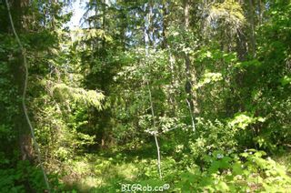 Photo 23: 4827 Goodwin Road in Eagle Bay: Vacant Land for sale : MLS®# 10116745