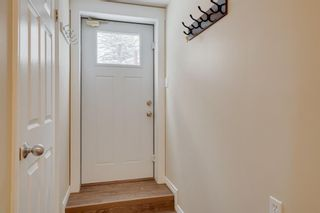 Photo 30: 6139 Buckthorn Road NW in Calgary: Thorncliffe Detached for sale : MLS®# A1070955