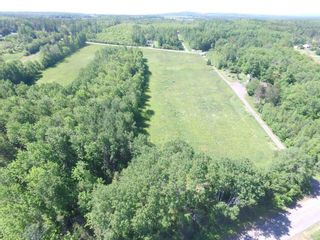 Photo 16: River John Road in Scotch Hill: 108-Rural Pictou County Vacant Land for sale (Northern Region)  : MLS®# 202115411