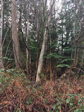 Photo 10: LOT D HEAL Road: Roberts Creek Land for sale (Sunshine Coast)  : MLS®# R2149518