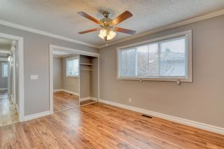 Photo 37: 355 Whitman Place NE in Calgary: Whitehorn Detached for sale : MLS®# A1046651