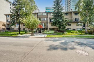 Photo 2: 3 821 3 Avenue SW in Calgary: Downtown Commercial Core Apartment for sale : MLS®# A1130579